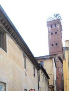 Lucca. Torre Gunigi.