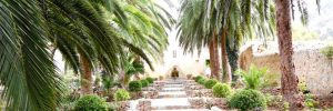 Mallorca. Jardines de Alfabia.