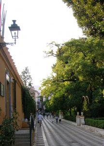 Sevilla. Jardines de Murillo.