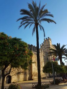 Córdoba. Alcázar de los Reyes Cristianos.