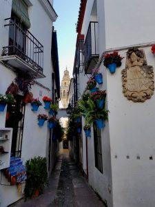 Córdoba. Calleja de las Flores.