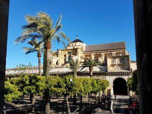 Córdoba. Mezquita. Patio de los Naranjos.