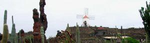 Lanzarote. Jardín de Cactus.