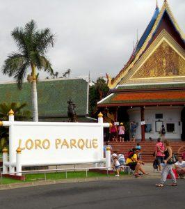 Puerto de la Cruz. Loro Parque.