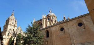 Salamanca. Patio Chico