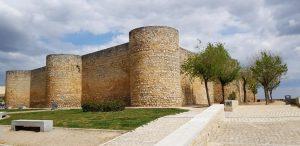 Toro. Castillo