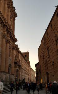Salamanca. Casa de las Conchas y Clerecía.