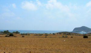 Cabo de Gata. Playa de los Genoveses