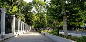 Madrid. Paseo del Prado.