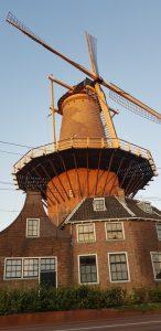 Delft. Molino de Roos