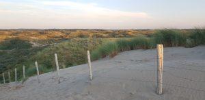 Zandvoort. Dunas